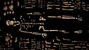 צילום: ROBERT CLARK/NATIONAL GEOGRAPHIC, LEE BERGER/UNIVERSITY OF THE WITWATERSRAND
