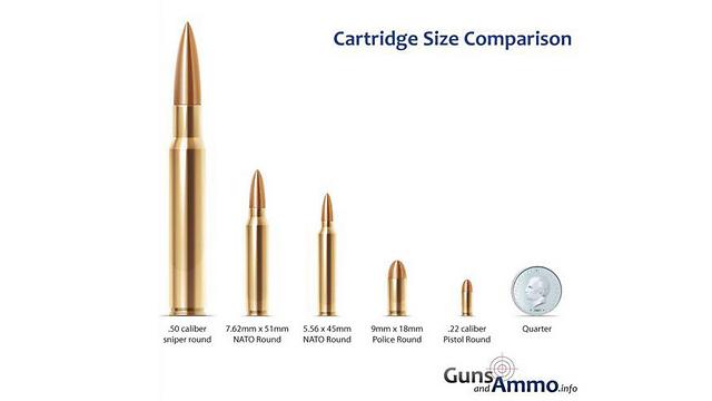 מימין, הקליע של הרוגר, לצד קליעים גדולים יותר (צילום: Guns and Amo.info) (צילום: Guns and Amo.info)