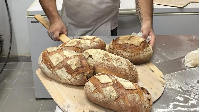"""הלחם של """"אדון שיפון"""" (צילום: נעה חסלוביצר) (צילום: נעה חסלוביצר)"""