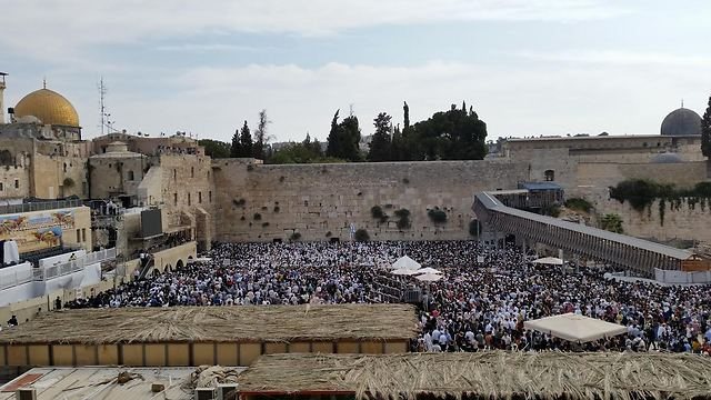 The Western Wall (Photo: Eli Mandelbaum)