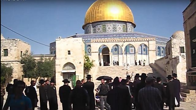 Haredim at the Temple Mount. 'I am very surprised that the Hasidic leadership allows it' (Photo: Temple Movements)