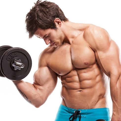 השרירים שלנו אחראים על אינספור תהליכים בגופנו (צילום: shutterstock)