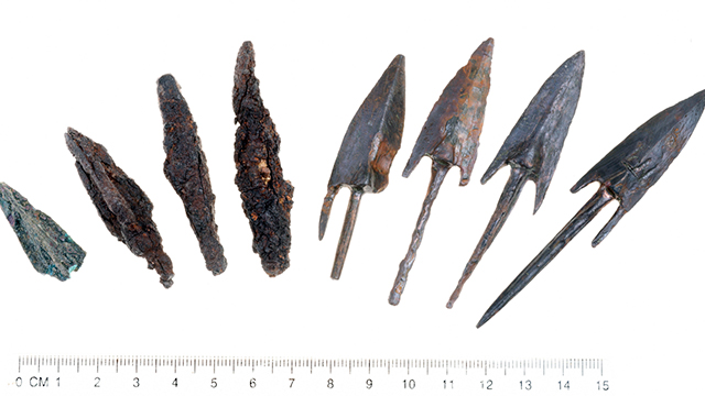Bronze arrowheads discovered at the site (Photo: IAA)