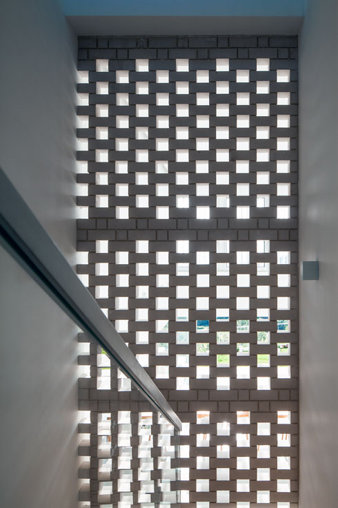 קיר המשרבייה שמלווה את גרם המדרגות (צילום: עמית גרון)