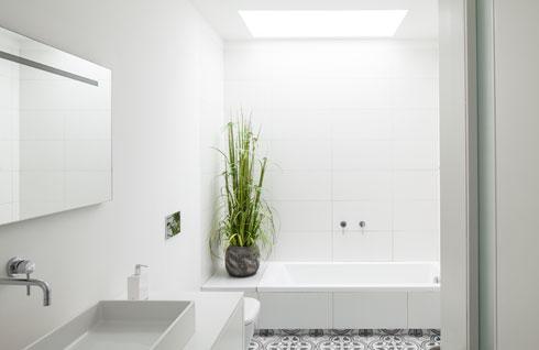 חלון סקיי-לייט מעל האמבטיה בחדר הרחצה של הילדים (צילום: עמית גרון)