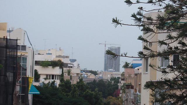 בתל אביב (צילום: מוטי קמחי)