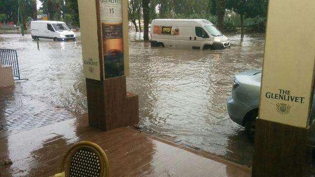 (צילום: דוברות עיריית אשקלון) (צילום: דוברות עיריית אשקלון)