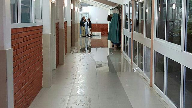 (ארכיון) (צילום: דוברות עיריית אשקלון) (צילום: דוברות עיריית אשקלון)