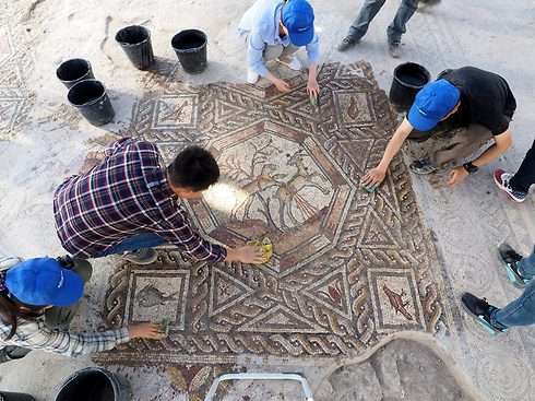 Archaeologists working on the mosaic in Lod (Photo: Israel Antiquities Authority)