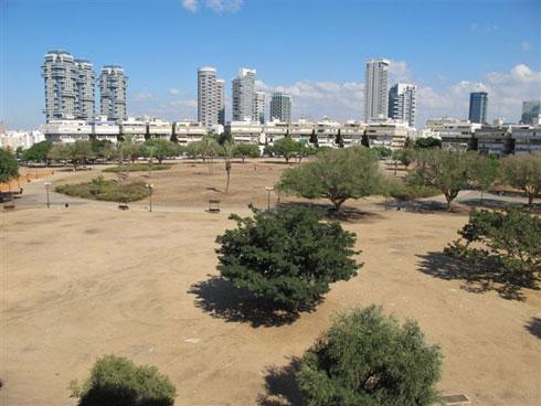 77 דונם כוללת כיכר המדינה. שלושת המגדלים עתידים לייצר רוח חזקה, ועצים יצטרכו להישתל כדי למתן אותה (צילום: מיכאל יעקובסון)