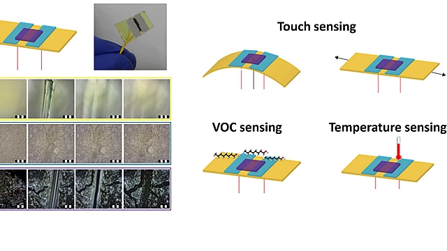 Electronic skin developed at the Technion in Haifa (Photo: Technion Spokesperson)