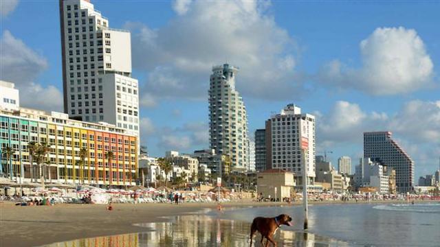 תל אביב. לשדר עסקים כרגיל (צילום: מריו טרויאני) (צילום: מריו טרויאני)