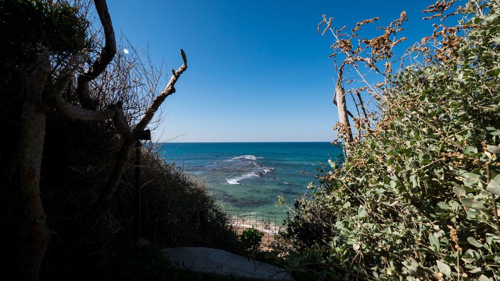 לאחרונה יזמה עיריית תל אביב סקר תיעוד נופי של המקום, מה שמסמן תחילתה של הכרה ציבורית בחשיבותו התרבותית (צילום: איתי סיקולסקי)