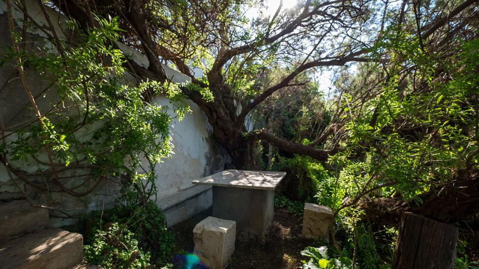 השכנים טוענים שמשפחת שדה תפסה את השטח באופן בלתי חוקי, ושהגן שייך לציבור (צילום: איתי סיקולסקי)