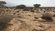 צילום: עודד נצר, המשרד להגנת הסביבה