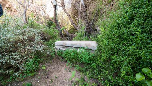 ספסלי מנוחה ברחבי הגן (צילום: איתי סיקולסקי)