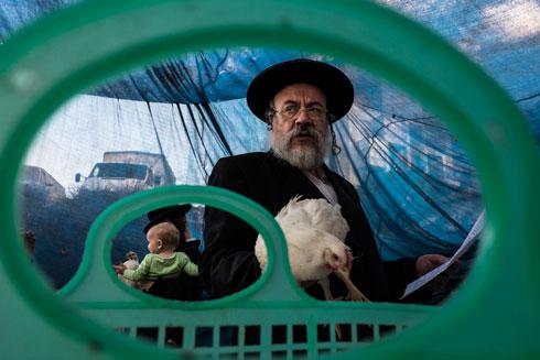מתוך התערוכה: כפרות בירושלים (צילום: גבי בן אברהם)