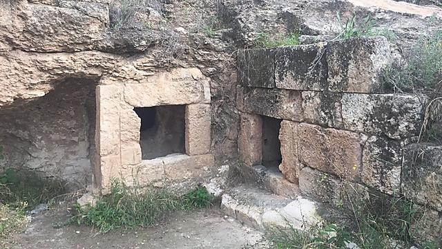 אולי לא אחוזה מפוארת אבל בכל זאת: מערת קבורה מהתקופה החשמונאית (צילום: גיל סלוביק) (צילום: גיל סלוביק)