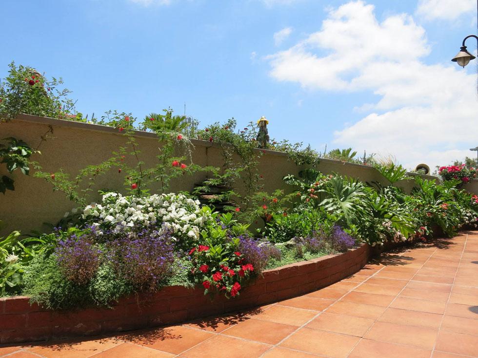 ערוגת בריקים אדומים בסגנון אנגלי. גינת גג אמיתית מאפשרת גידול צמחייה גבוהה בעומק מצע שתילה נמוך במיוחד (צילום: באדיבות רודה גינון גגות)