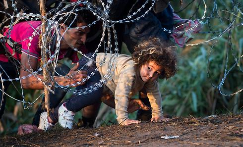 תמונות משיא משבר הפליטים ב-2015: ילדה בגבול הונגריה (צילום: AP) (צילום: AP)