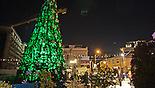 Елка в Тель-Авиве (צילום: עיריית תל אביב יפו)