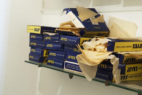 קופסאות נייר הטואלט התלוש, לנוחותם של הזוג ויצמן ואורחיהם (צילום: בן לם)