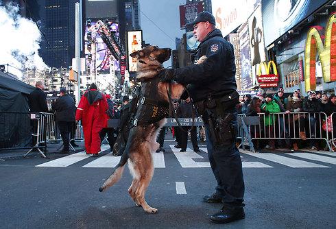 שוטר ממשטרת ניו יורק מחזיק את כלבו במהלך מבצע האבטחה הגדול של חגיגות השנה החדשה בטיימס סקוור (צילום: AFP) (צילום: AFP)