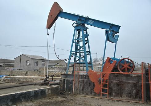 הרבה יותר מנפט (צילום: עופר מאיר) (צילום: עופר מאיר)