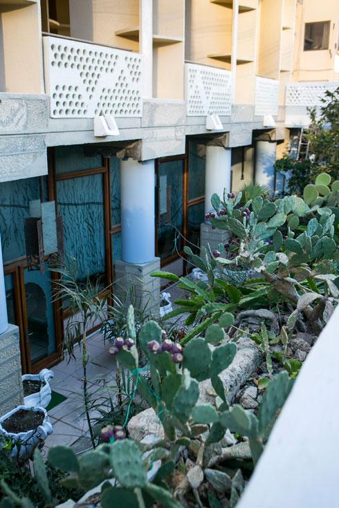 הדירה של בוני הבית המשוגע בתל אביב. לחצו לכתבה המלאה (צילום: שירן כרמל)