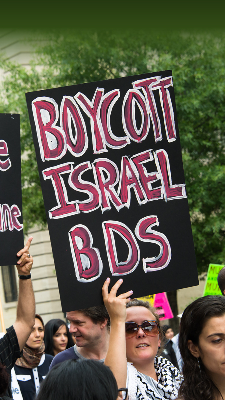 BDS on American university campuses