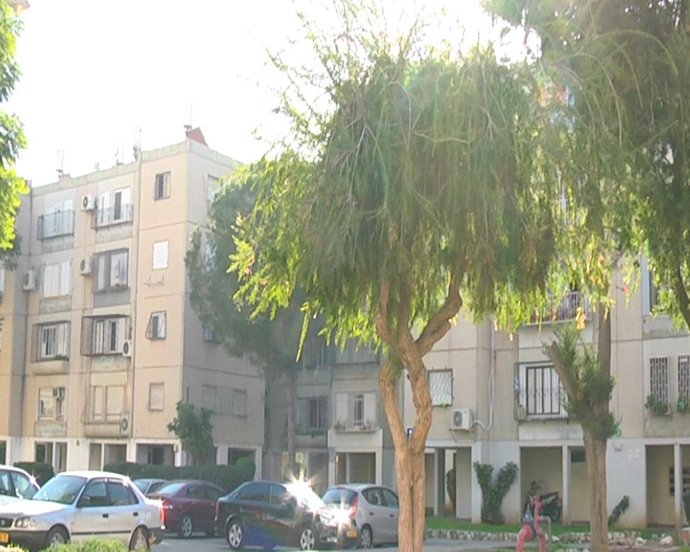 שכונת לוד הצעירה בלוד (צילום: אורי דוידוביץ) (צילום: אורי דוידוביץ)