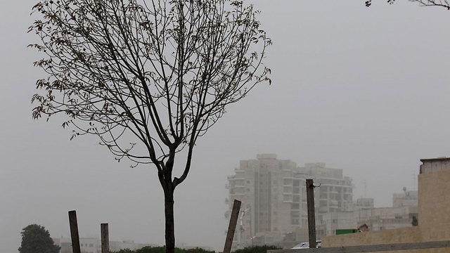 Haze in Rehovot (Photo: Avi Mualem)