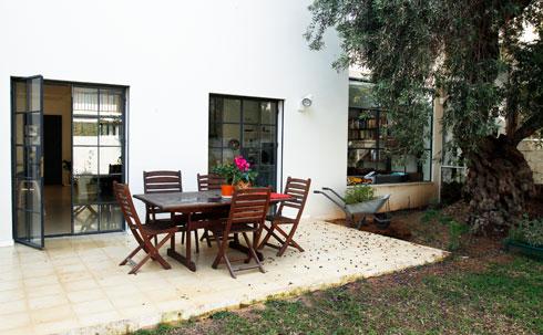 בחצר האחורית נשמר עץ הזית העתיק (צילום: אסי אורן)