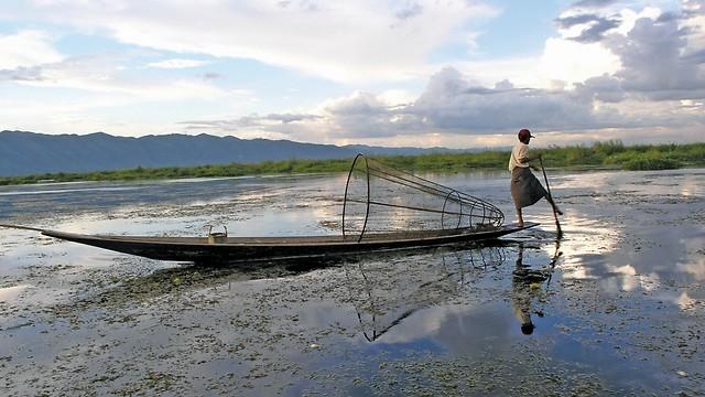 מתפרנסים מחקלאות הידרופונית (צילום: גיא גלבגיסר) (צילום: גיא גלבגיסר)