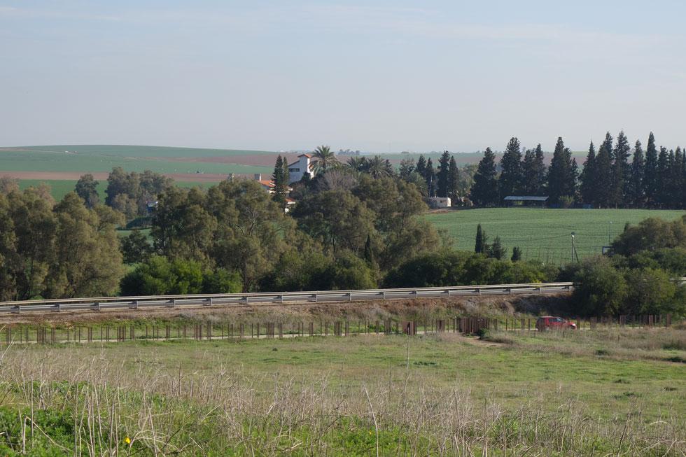 חוות שקמים המאובטחת היטב נצפית מראש הגבעה, שהייתה כפר ערבי עד 1948, הפכה לנכס משפחתי ולחלקת הקבר של אריאל ולילי שרון (צילום: מיכאל יעקובסון)