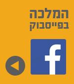 פייסבוק מלכת המדבר