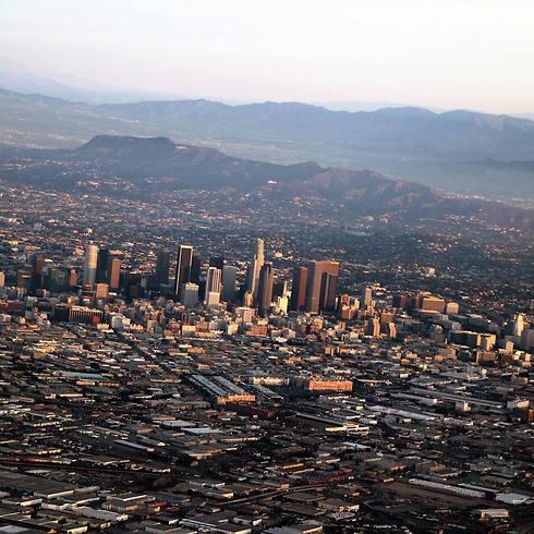 ועוד קצת לוס אנג'לס (צילום: תומר צדוק) (צילום: תומר צדוק)