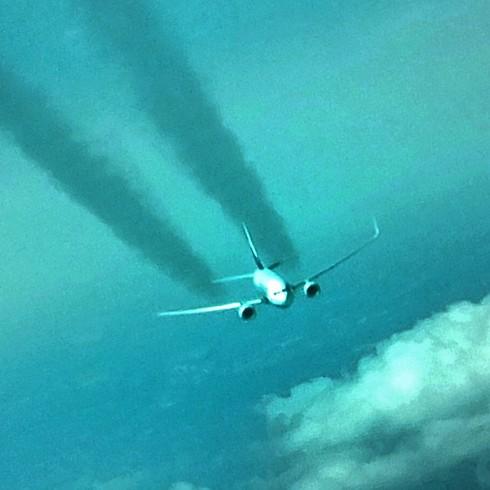 זהירות, מטוס חוצה (צילום: תומר צדוק) (צילום: תומר צדוק)