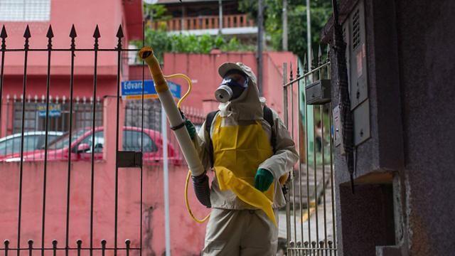 מרססים נגד יתושים בברזיל, בניסיון למגר את נגיף הזיקה (צילום: Gettyimages) (צילום: Gettyimages)