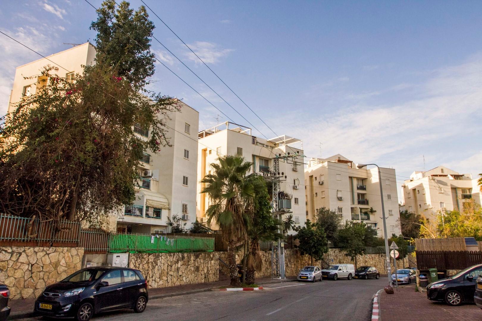שכונת נווה אפק (צילום: עידו ארז) (צילום: עידו ארז)