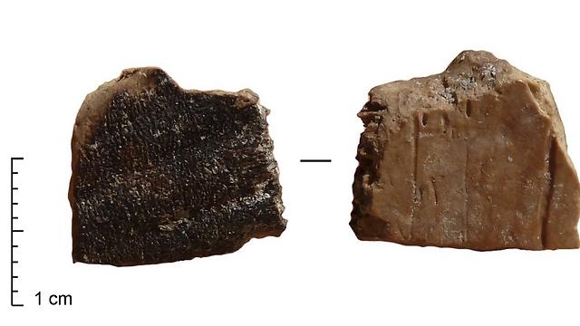 """סימני שריפה על שבר של שריון צב ממערת קסם. שימו לב כי החלק החיצוני של השריון שרוף בעוד החלק הפנימי אינו שרוף. נתונים אלה מעידים כי הצב נצלה בתוך השריון (צילום: ד""""ר רות בלסקו, המכון הלאומי לחקר האבולוציה של האדם, ספרד) (צילום: ד"""