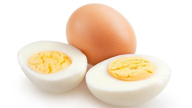 ביצים - רק מגיל חצי שנה (צילום: shutterstock) (צילום: shutterstock)