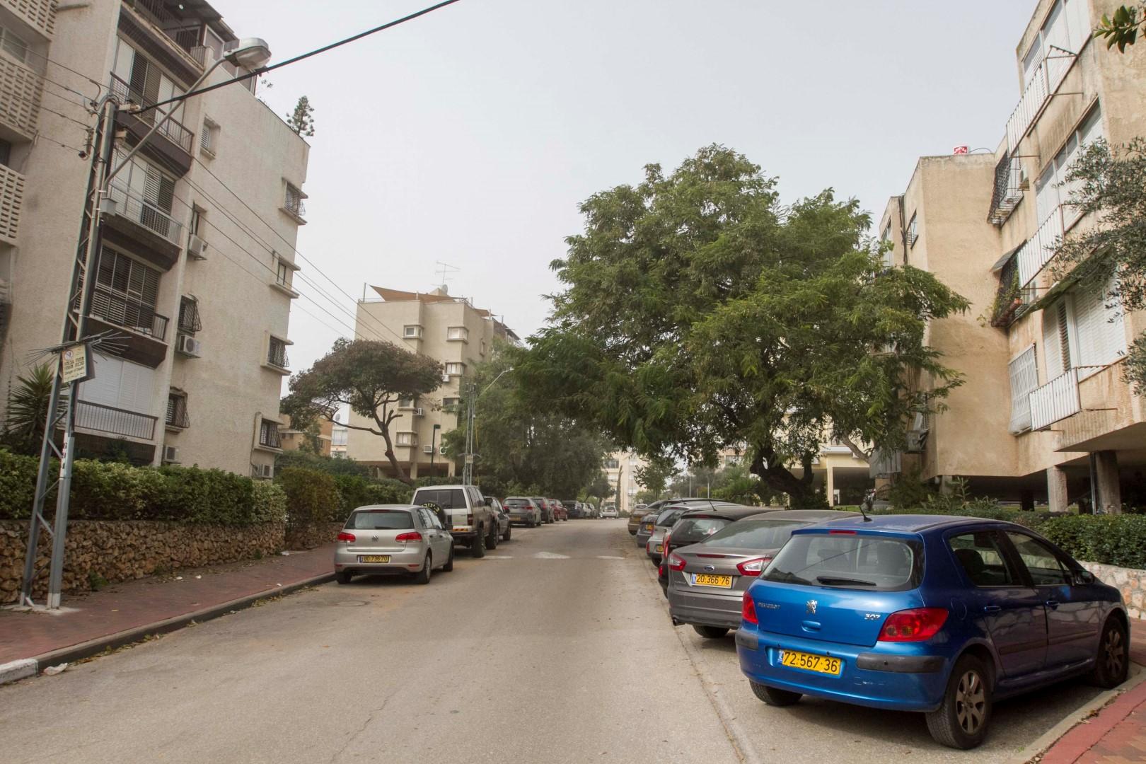 שכונת רמתיים (צילום: עידו ארז) (צילום: עידו ארז)