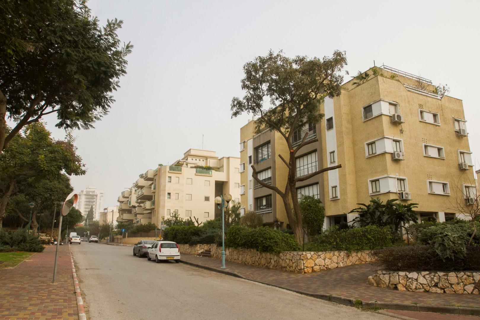 שכונת מגדיאל (צילום: עידו ארז) (צילום: עידו ארז)