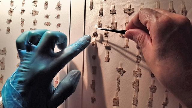 אלפי קטעי המגילות העתיקות- משולחן השימור אל השולחן הווירטואלי (צילום: שי הלוי, באדיבות רשות העתיקות)