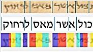 צילום: גיל שדה, אוניברסיטת תל אביב