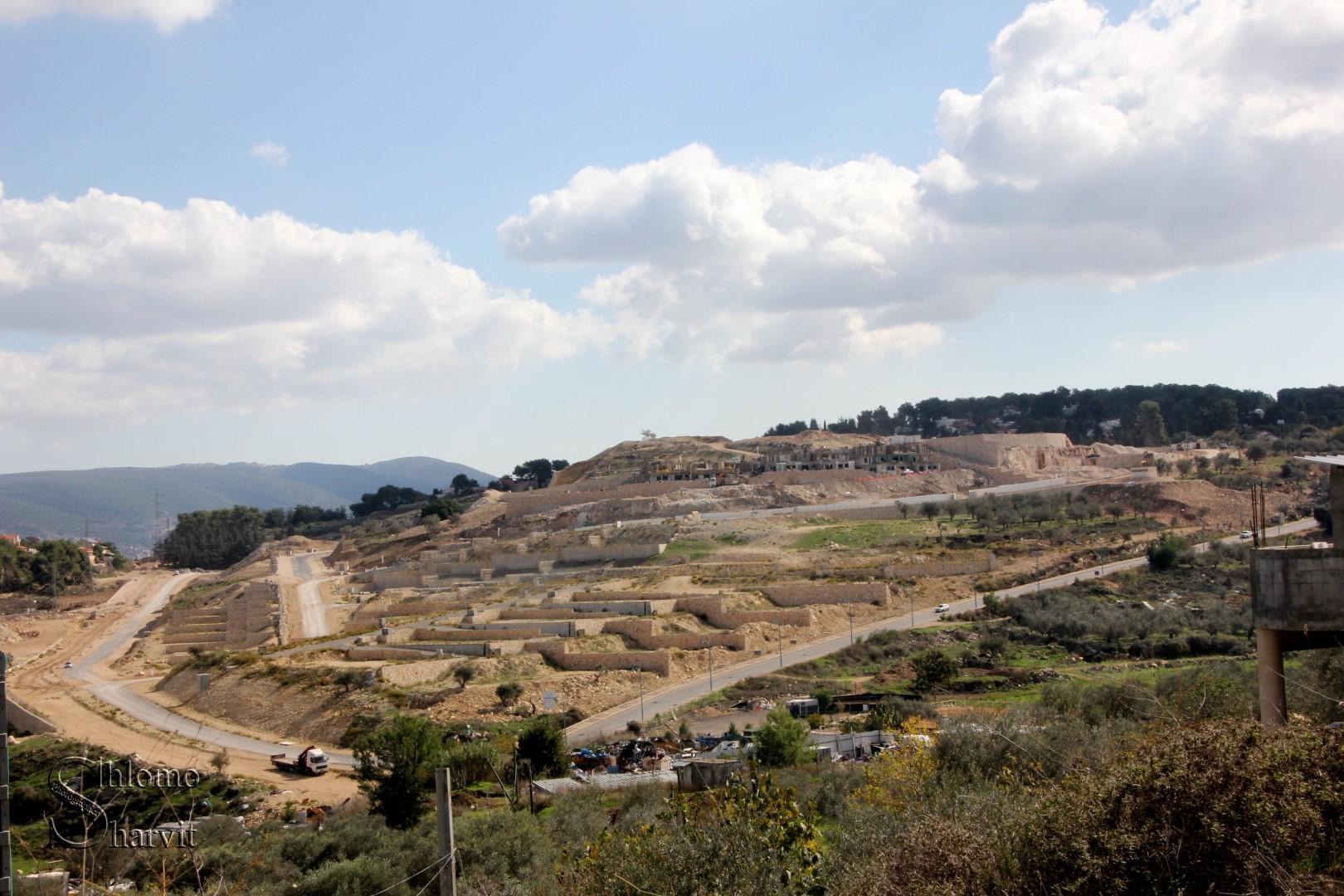 שכונת אורנים במעלות תרשיחא (צילום: שלמה שרביט) (צילום: שלמה שרביט)