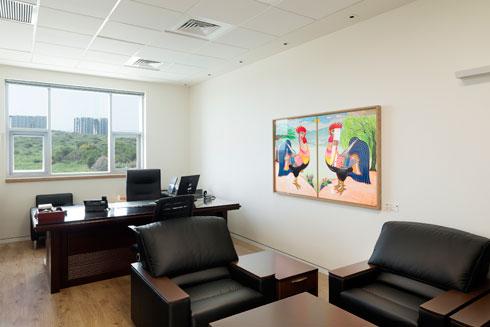 קומות המשרדים. פשטות (צילום: גדעון לוין)