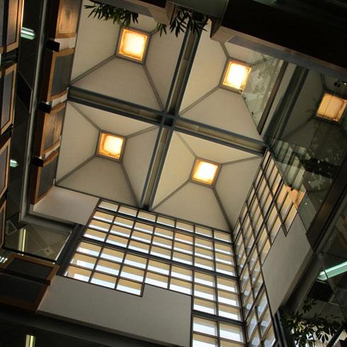 תאורה טבעית בספרייה (כמו כאן באוניברסיטת ת''א) ריתקה את המשרד. כך גם בספריית ארן, המופיעה בראש הכתבה (צילום: מיכאל יעקבסון)