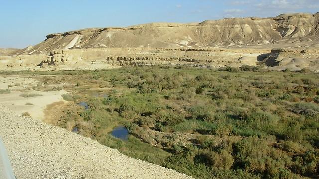 הנוף ממושב עין יהב. 900 משפחות במועצה האזורית הערבה התיכונה (צילום: הראל זלצר)